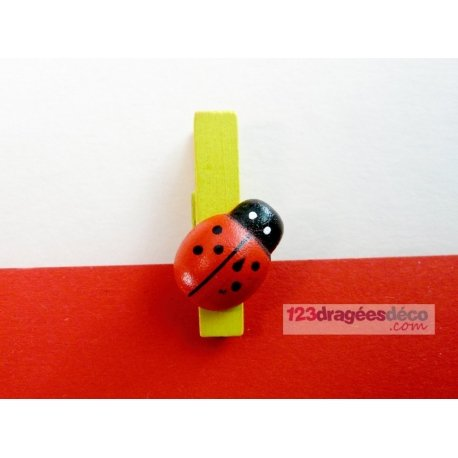 Pince Coccinelle (x6)